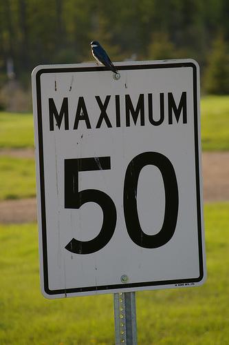 Maximum 50
